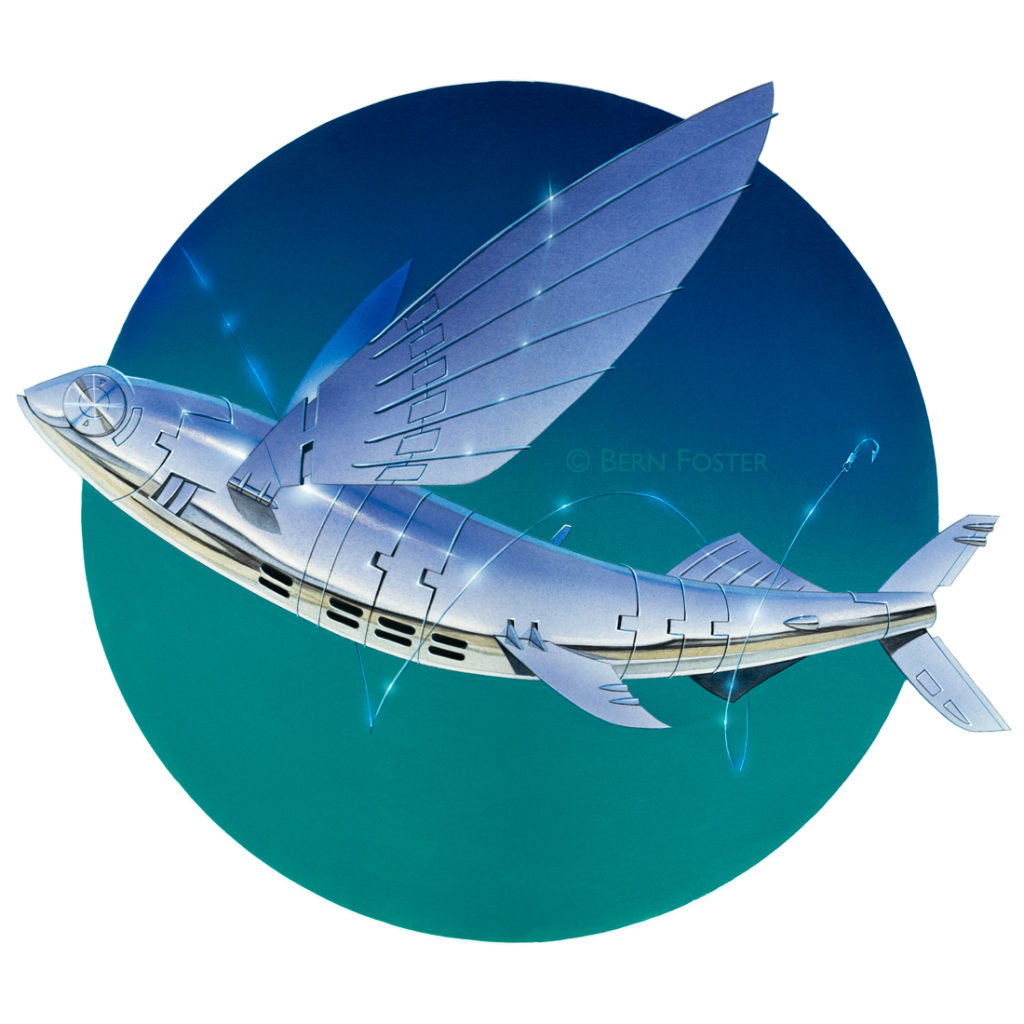Flying-fish_square_low